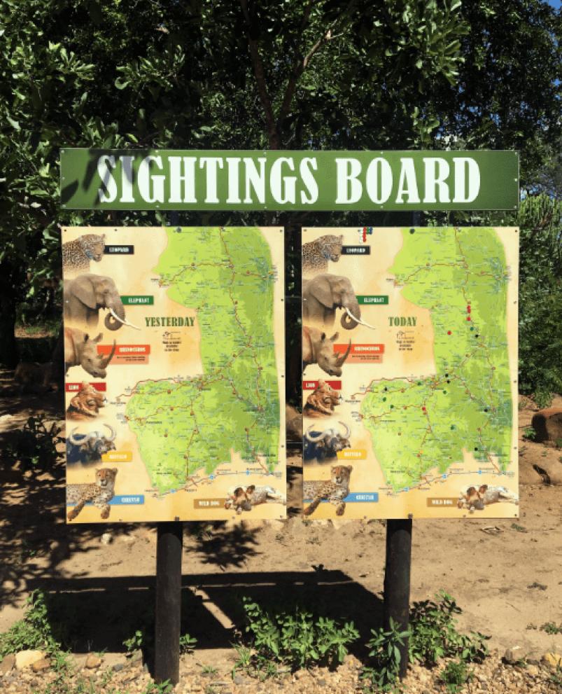Dois quadros com o título de Sightings Board, em português, Quadro de Avistamentos. O primeiro quadro mostra onde leões, leopardos, rinocerontes, búfalos e elefantes foram vistos no dia anterior e o segundo mostra onde estes animais foram vistos no dia.